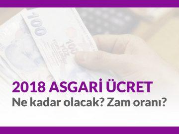 2018 Yılında Asgari Ücret Beklentisi